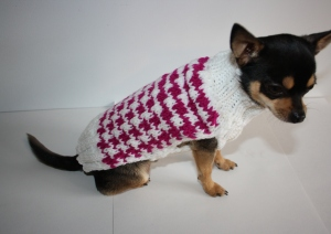 Houndstooth small dog sweater knit in fresh modern colors. You know your pet wants one in every color, right?!