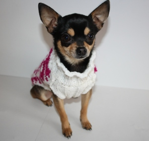 If you have a small dog and like to knit, then this pattern is a must-have. It's quick and takes a small amount of yarn. Your pup will be stylish and warm come winter.