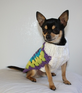 Bringing sexy back or at least the awesome Granny Square! Behold, my furry baby, Rebel, modeling my crochet dog sweater design. Handsome, right?!